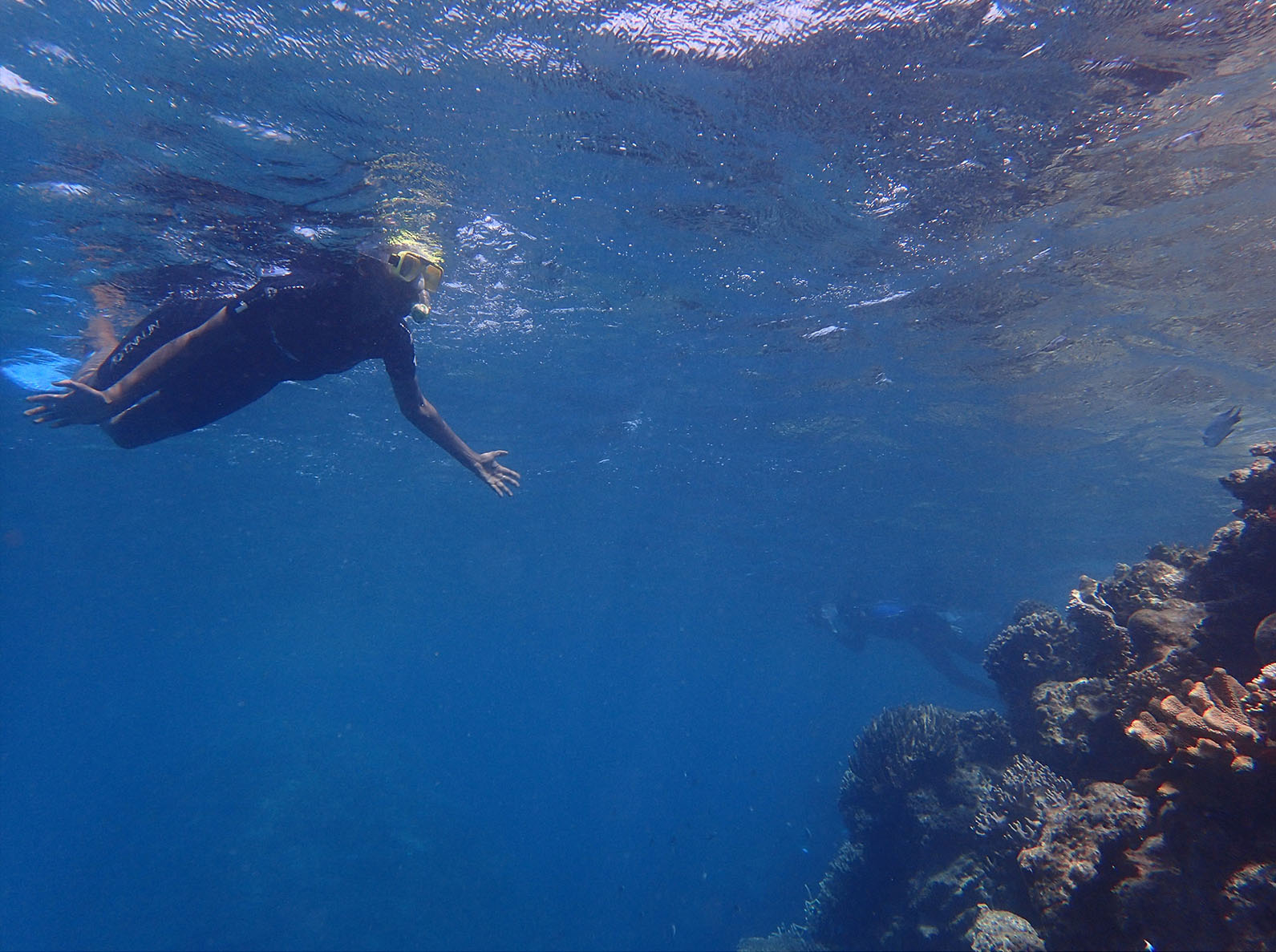 Taku Mbudzi Snorkelling Great Barrier Reef Silence 4